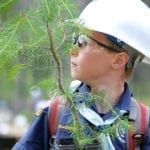 Boy Scouts of America Centennial Forest