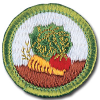Gardening merit badge, earned by Boy Scouts of America members after requirement completion. Features lettuce, carrot and tomato stitching.