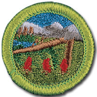 Wilderness survival merit badge for Boy Scouts, featuring shelter in trees