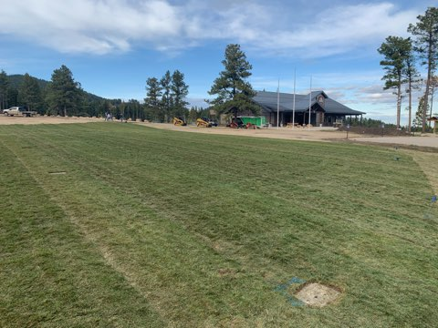 K-M Scout Ranch Sod